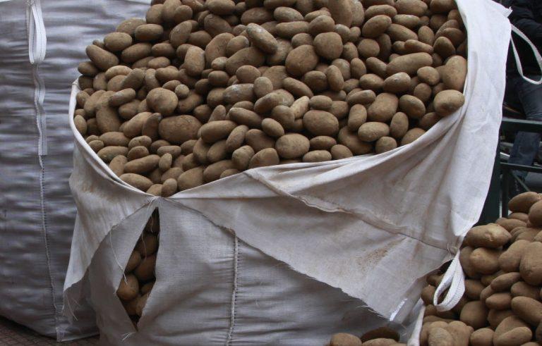 Ανάμεσα στις πατάτες… δύο χειροβομβίδες του Β' Παγκοσμίου Πολέμου! | Newsit.gr
