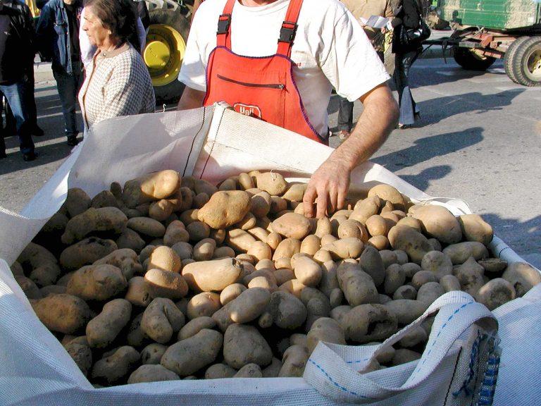 12 τόνους πατάτες θα μοιράσουν αύριο στη Θεσσαλονίκη οι αγρότες του Νευροκοπίου!   Newsit.gr