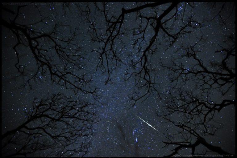 Θα βρέξει… αστέρια το Σάββατο! | Newsit.gr