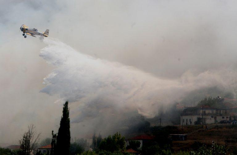 Μάχη με τις φλόγες και τον άνεμο στην Πελοπόννησο   Newsit.gr