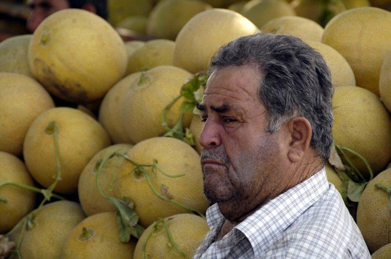 Τρίκαλα: Καταστροφές σε καλλιέργειες πεπονιών από τη χαλαζόπτωση | Newsit.gr