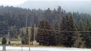 Ποια άνοιξη; Χιονίζει στο Περτούλι! [pics]
