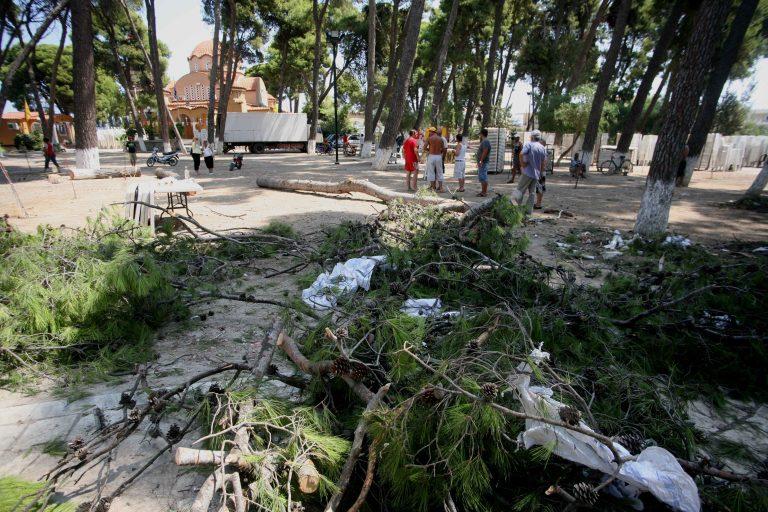Εύβοια: Εποχικός πυροσβέστης καταπλακώθηκε από πεύκο!   Newsit.gr