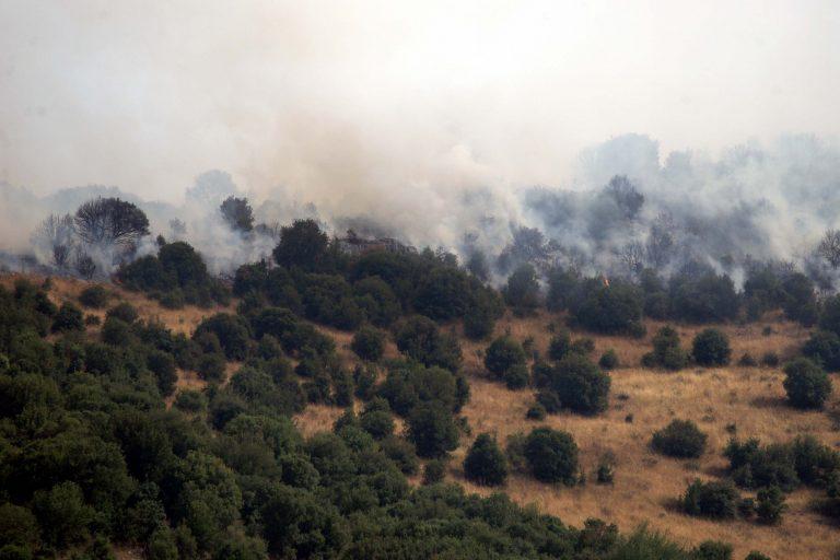 Πυρκαγιά σε εξέλιξη σε Ηλεία και Λάρισα | Newsit.gr