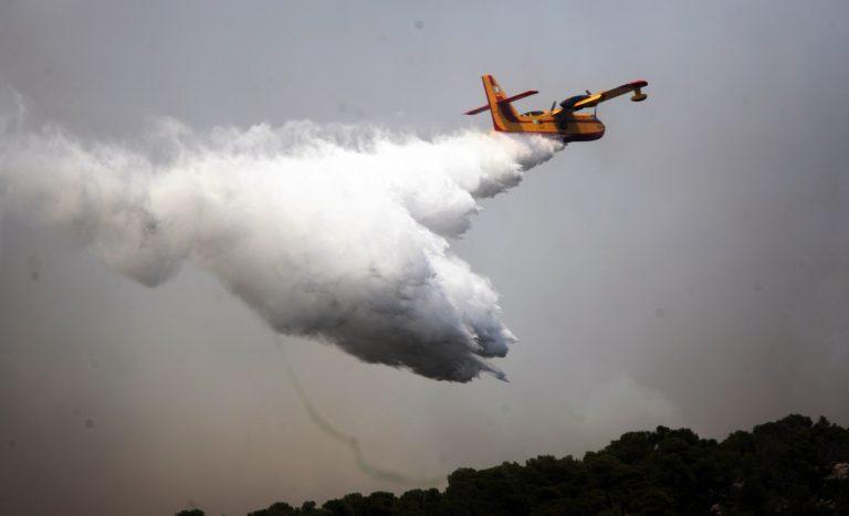 Πυρκαγιά μαίνεται στον Ορχομενό Βοιωτίας | Newsit.gr