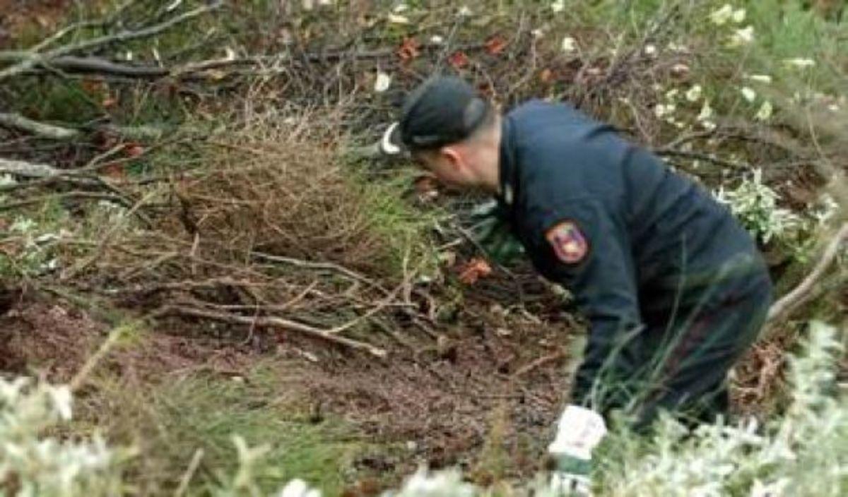 Φθιώτιδα: Άγρια ζώα έφαγαν το πτώμα 62χρονης οδοντιάτρου!   Newsit.gr