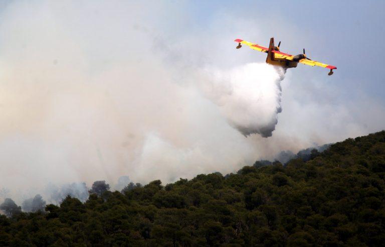 Λακωνία: Υπό έλεγχο οι δύο πυρκαγιές | Newsit.gr