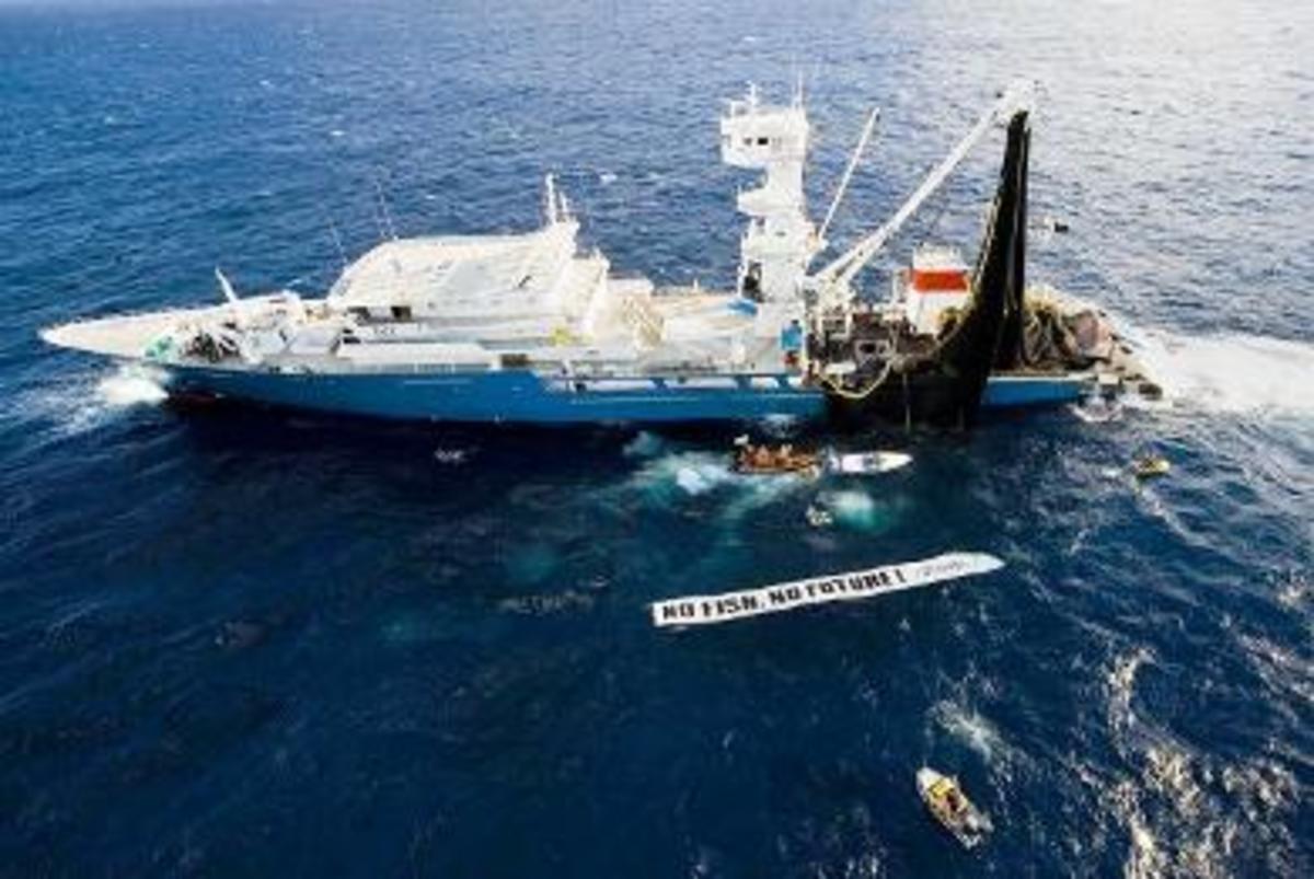 Γάλλος ψαράς επιτέθηκε με καμάκι…   Newsit.gr