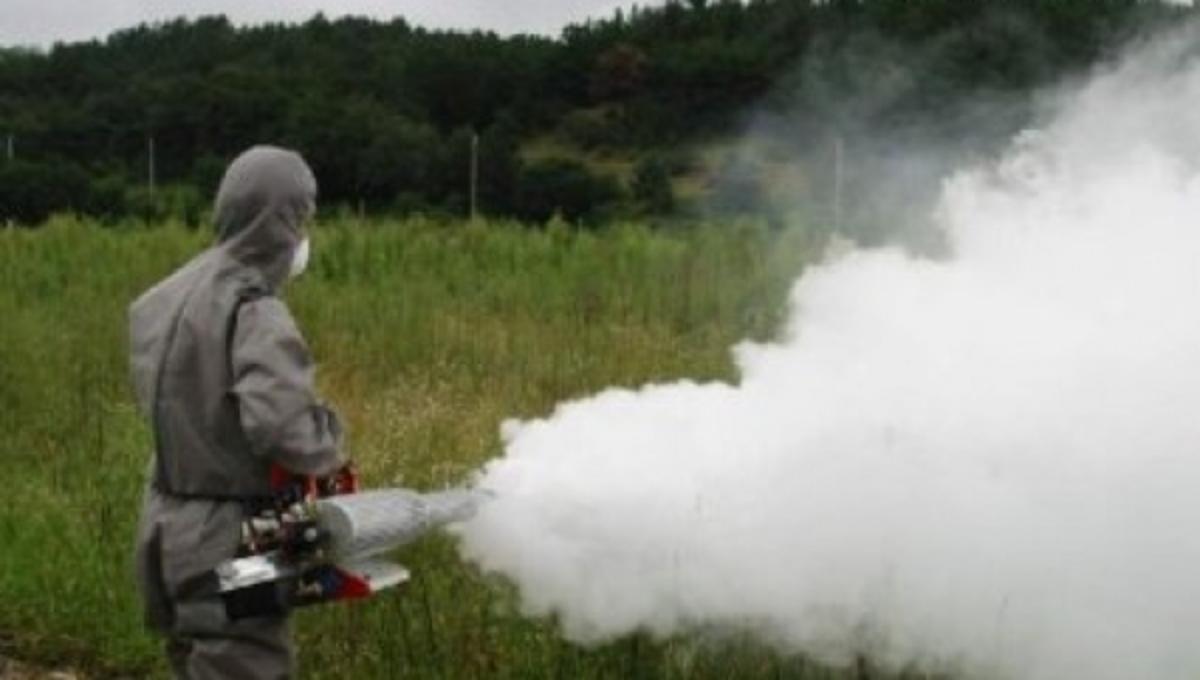 Το σχέδιο δράσης κατά των κουνουπιών για το καλοκαίρι του 2013 | Newsit.gr