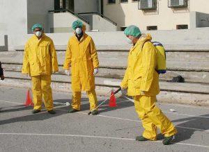 Νεκρός κύκνος από τη γρίπη των πτηνών βρέθηκε στο Δέλτα Έβρου