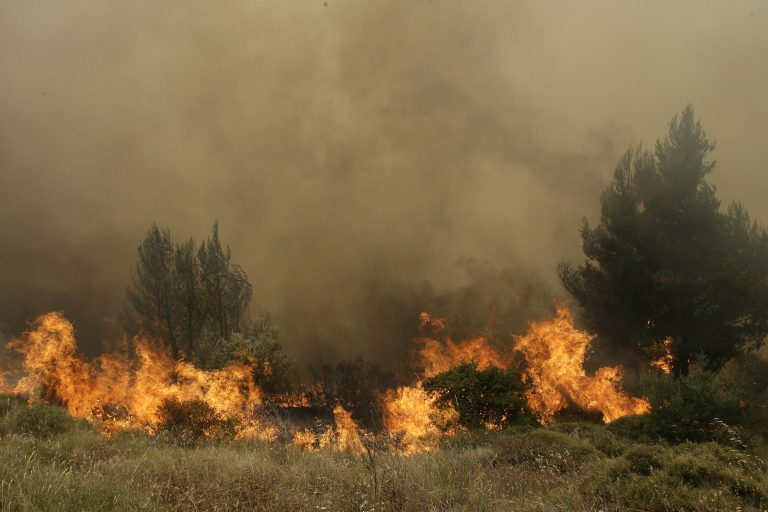 Κόλαση φωτιάς στη Βιάννο – Εκκενώθηκαν οικισμοί | Newsit.gr
