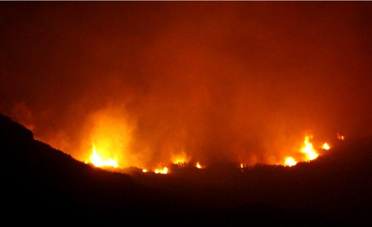 Στάχτη 5 στρέμματα πευκοδάσους στον Όλυμπο – Μαίνεται η φωτιά | Newsit.gr