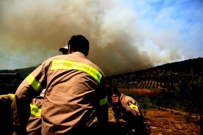«Ναι» απο το ΣτΕ σε προσλήψεις εποχικών πυροσβεστών   Newsit.gr