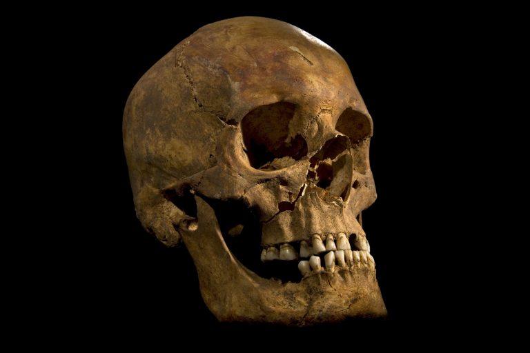 Ιστορική ανακάλυψη: βρήκαν τα λείψανα του Ριχάρδου του 3ου! (ΦΩΤΟ) | Newsit.gr