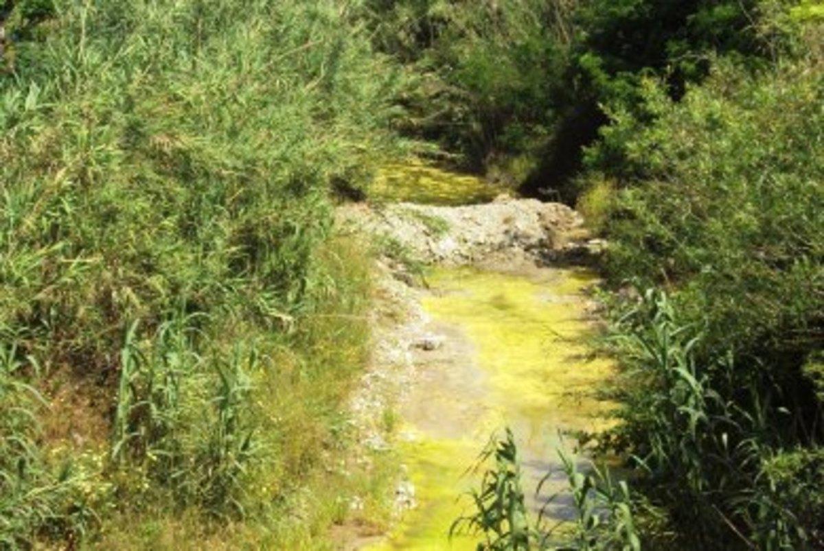 Ρόδος: Κίτρινο… ποτάμι! | Newsit.gr