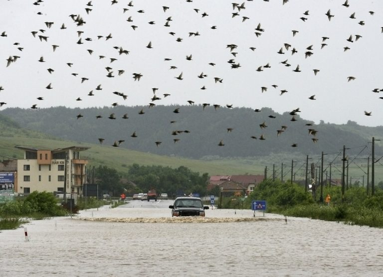 Φονικές πλημμύρες στη Ρουμανία   Newsit.gr