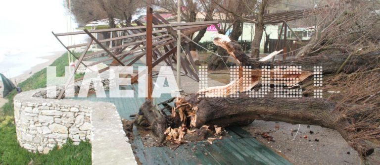 Ηλεία: Ανεμοστρόβιλος κατέστρεψε από κατασκευές και δέντρα μέχρι αυτοκίνητα-Δείτε φωτό! | Newsit.gr