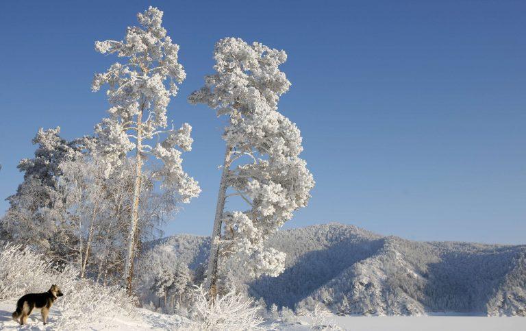 Μέχρι και -48 βαθμούς το θερμόμετρο στη Ρωσία | Newsit.gr