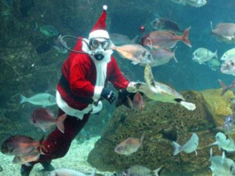 Ο Άγιος Βασίλης φόρεσε μάσκα και βατραχοπέδιλα! | Newsit.gr