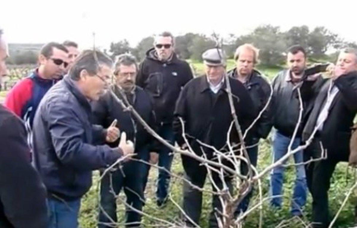 Κρητικοί εγκαταλείπουν την Αθήνα και επιστρέφουν στο χωριό για να μάθουν να καλλιεργούν τα χωράφια! | Newsit.gr