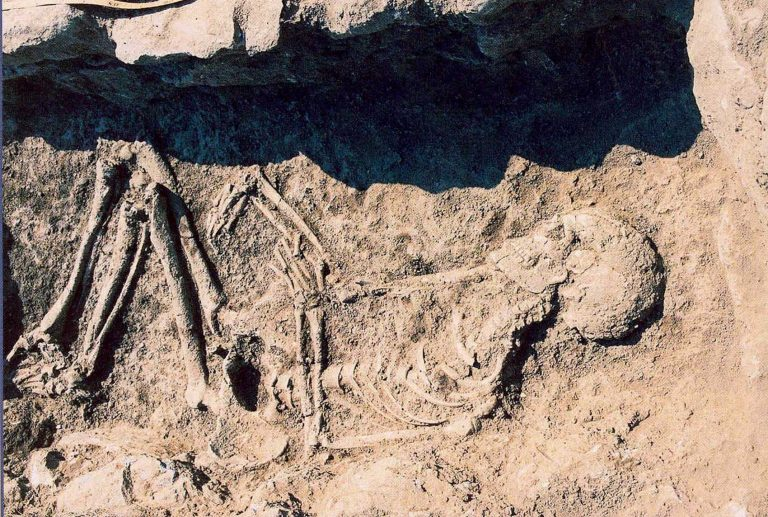 Ιωάννινα: Έγκλημα «δείχνει» ο σκελετός που βρέθηκε σε σταύλο | Newsit.gr