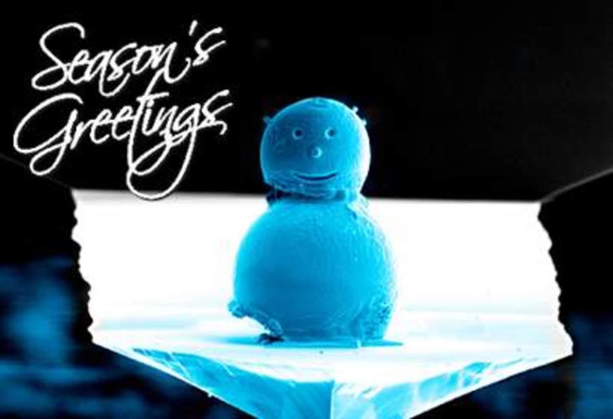 Ο μικρότερος χιονάνθρωπος του κόσμου! | Newsit.gr
