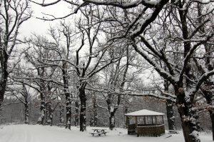 Καιρός: Κρύο και χιόνια την Κυριακή