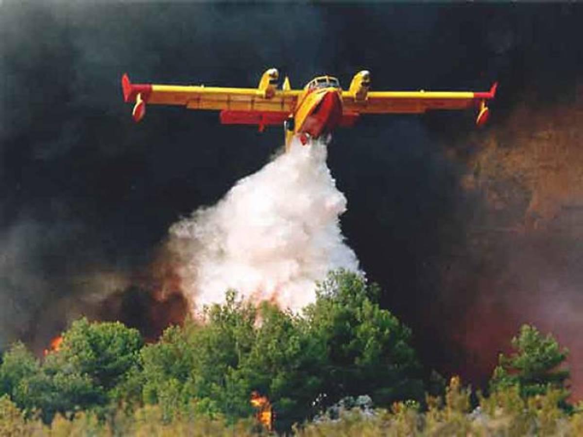 Μεγάλη φωτιά στο Σοφικό Κορινθίας | Newsit.gr