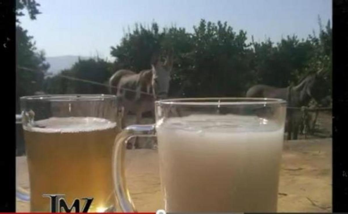 ΣΟΚ! Σε πολύ γνωστό τηλεπαιχνίδι τους εδωσαν να πιουν σπέρμα ζώου»! ΔΕΙΤΕ βίντεο! | Newsit.gr