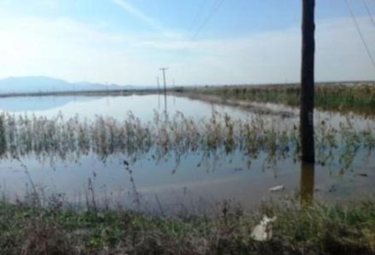 Φθιώτιδα: Ο Σπερχειός σκόρπισε… απόγνωση στους αγρότες!   Newsit.gr