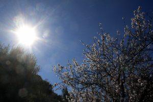 Καιρός: Ανεβαίνει η θερμοκρασία την Κυριακή! Αναλυτική πρόγνωση