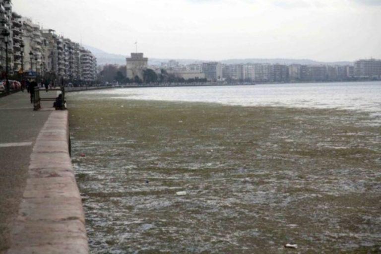 Σε εξέλιξη ο καθαρισμός του Θερμαϊκού παρά τις αντίξοες καιρικές συνθήκες | Newsit.gr