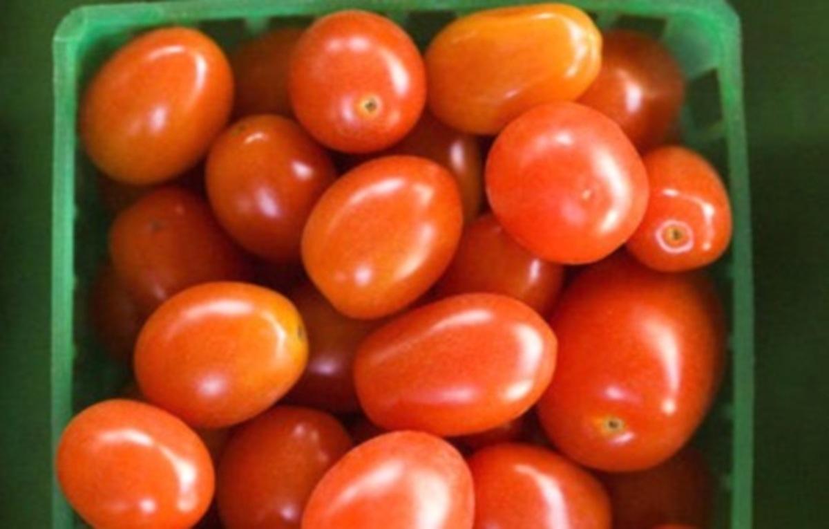 Δεσμεύτηκαν 340 τόνοι προϊόντων ντομάτας – Αναστέλλεται η λειτουργία της εταιρείας | Newsit.gr