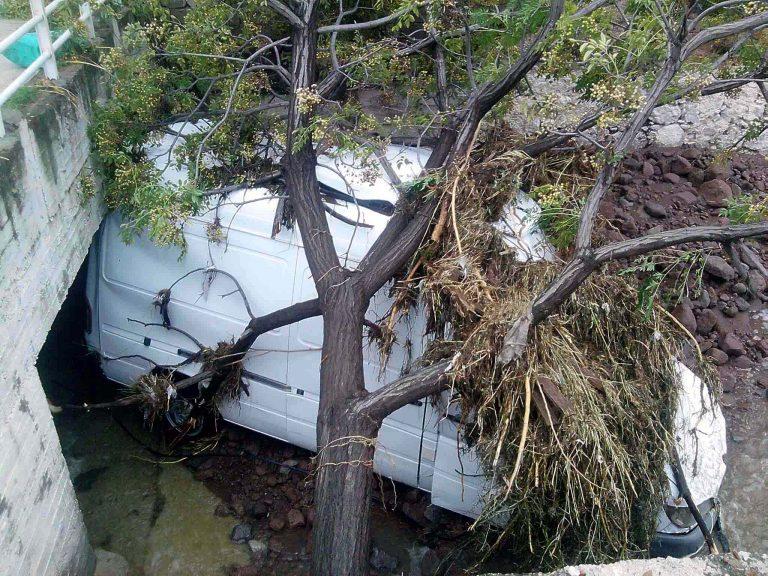 Μεσσηνία: Μετωπική θανάτου με… ένα δέντρο | Newsit.gr