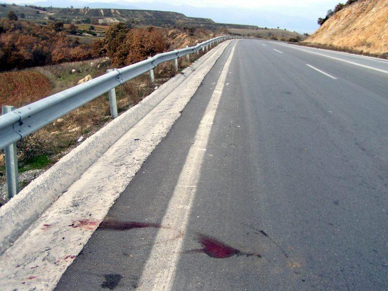 Θύματα της «ασφάλτου» έπεσαν ένας λύκος και ένα αγριογούρουνο | Newsit.gr