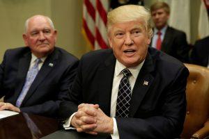 Ο Τραμπ ρίχνει την φορολογία των επιχειρήσεων στο 15% από 35%