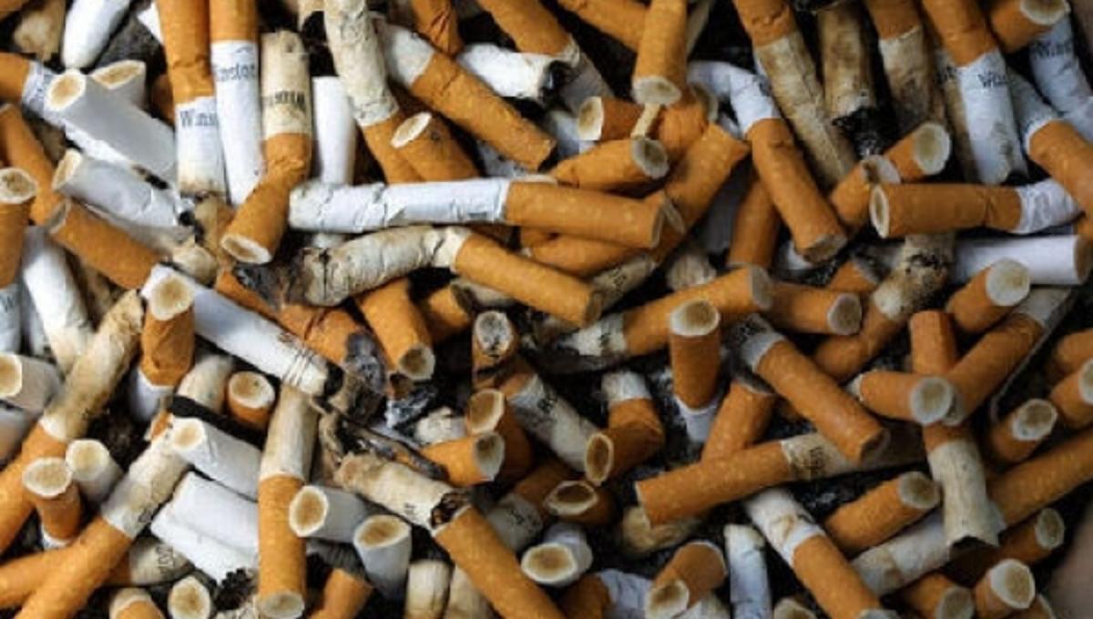 Δείτε πόσα δηλητήρια βάζουμε στον οργανισμό, με ένα τσιγάρο   Newsit.gr