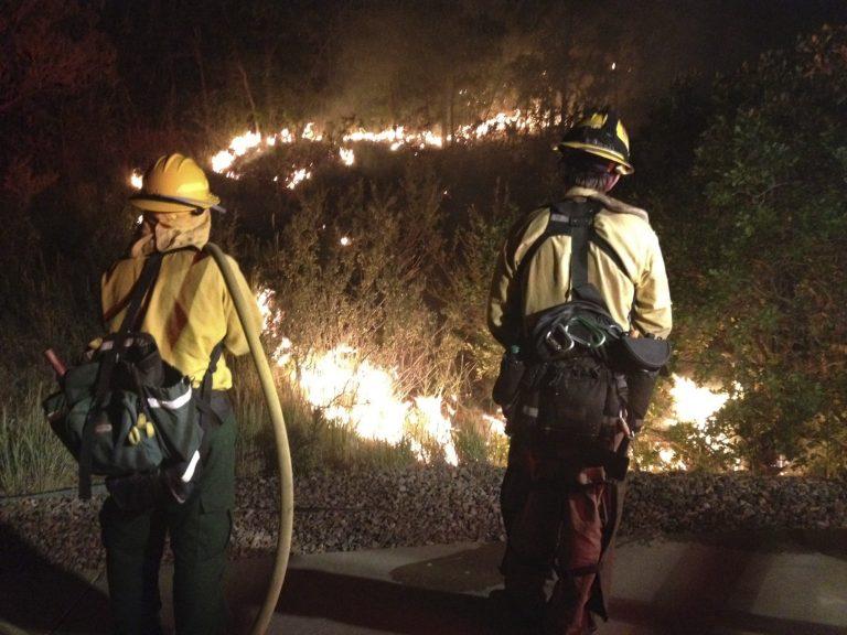 Φονικές πυρκαγιές και καταιγίδες στις ΗΠΑ – Σε κατάσταση έκτακτης ανάγκης αρκετές πολιτείες | Newsit.gr