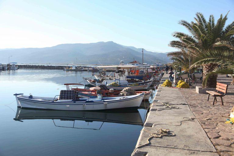 Ν. Μηχανιώνα: Δεμένες στο λιμάνι οι ψαρόβαρκες   Newsit.gr