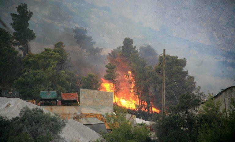 Μεγάλη φωτιά στον Αλίαρτο – Απειλούνται σπίτια   Newsit.gr