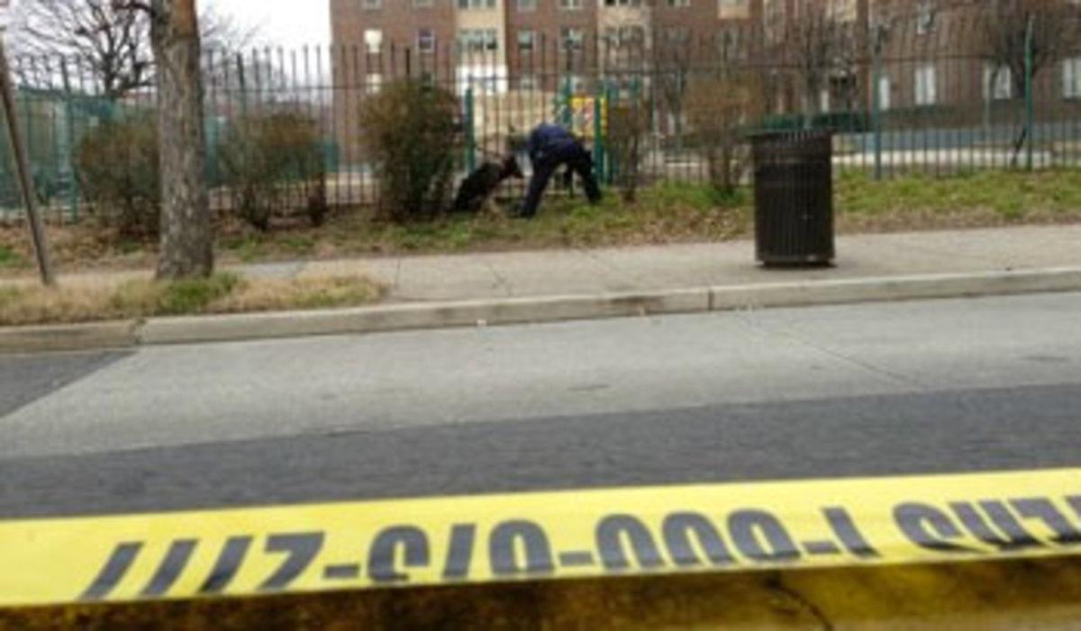 «Γάζωσαν» κόσμο στην Ουάσινγκτον – Τουλάχιστον 10 τραυματίες | Newsit.gr