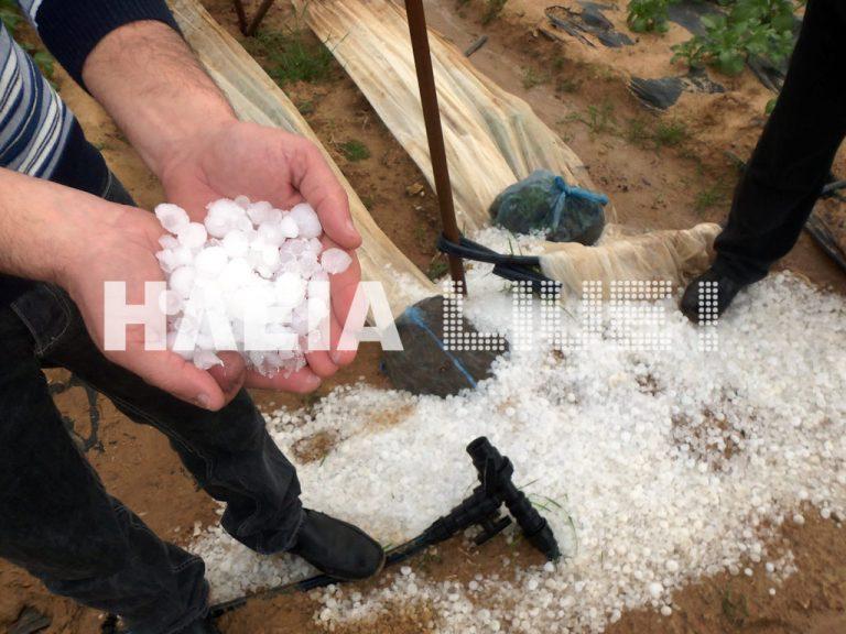 Ηλεία: Έπεφτε χαλάζι σα μικρό καρύδι! ΦΩΤΟ | Newsit.gr