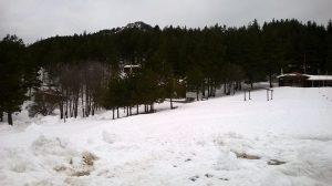 Καιρός: Χιόνια σε ολόκληρη στην Θράκη! Δείτε φωτογραφίες