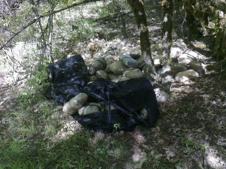 Πυροβόλησαν κυνηγό γιατί τον μπέρδεψαν με αστυνομικό – «Μπλόκο» σε 883 κιλά χασίς στη Θεσπρωτία | Newsit.gr