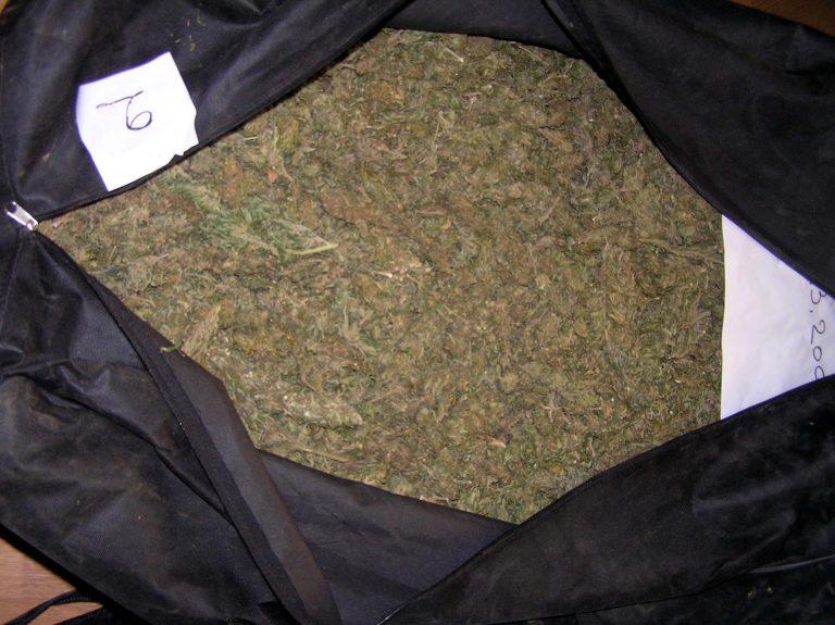 Ηγουμενίτσα: Έκρυβαν 210 κιλά χασίς κάτω από κλαδιά!   Newsit.gr