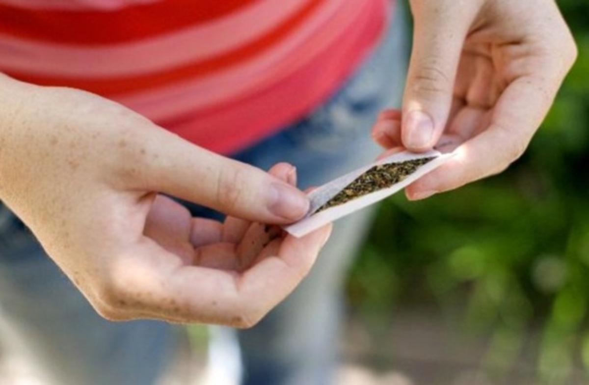 Εργαστήριο καλλιέργειας μαριχουάνας σε κτήμα αντιδημάρχου! | Newsit.gr