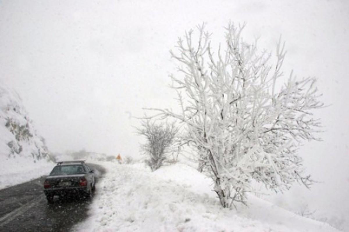 Στην Πολωνία έχουν πεθάνει 101 άνθρωποι από το κρύο | Newsit.gr