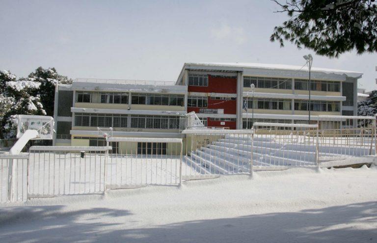 Φθιώτιδα: Το χιόνι έκλεισε σχολεία | Newsit.gr