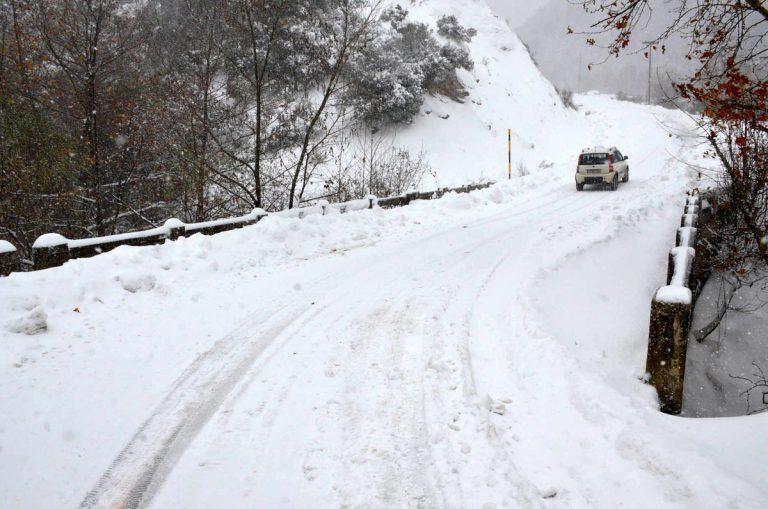 Κακοκαιρία: Πτώσεις δέντρων στην Αττική, διακοπήκε η κυκλοφορία στη λ.Πάρνηθος | Newsit.gr