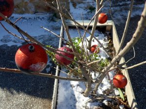 Ο καιρός τα Χριστούγεννα: Κρύο, χιόνια και πολύ χαμηλές θερμοκρασίες